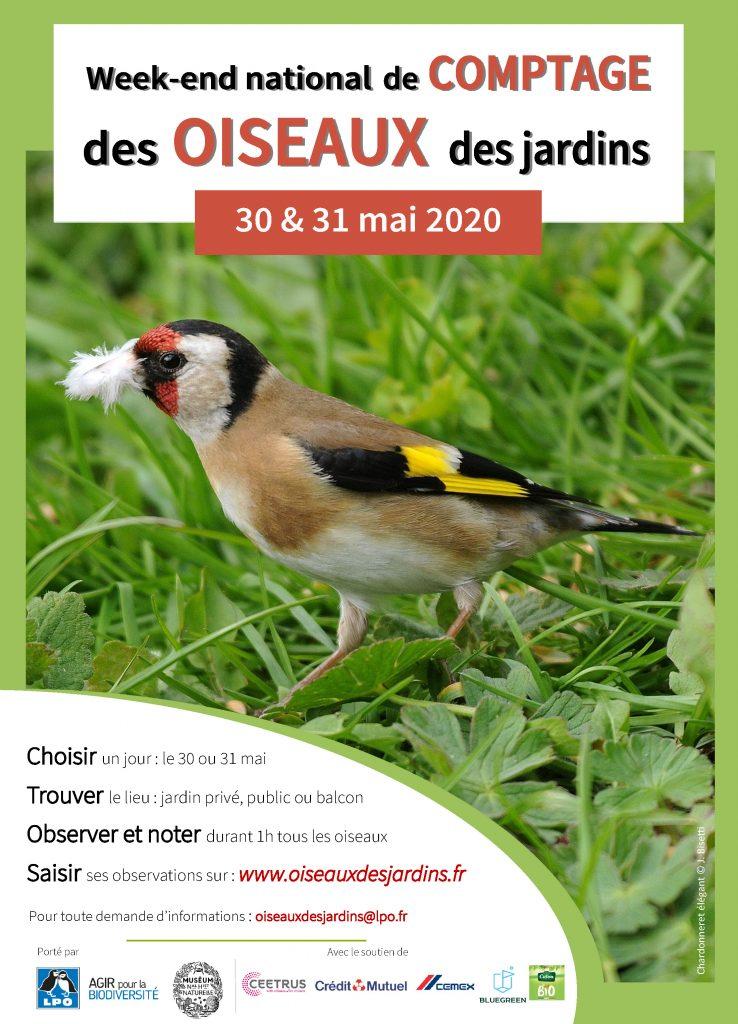 """affiche """"week-end national de comptage des oiseaux des jardins"""" de la LPO"""